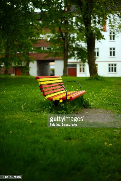 red and yellow painted bench in a park - kristina strasunske stock photos and pictures