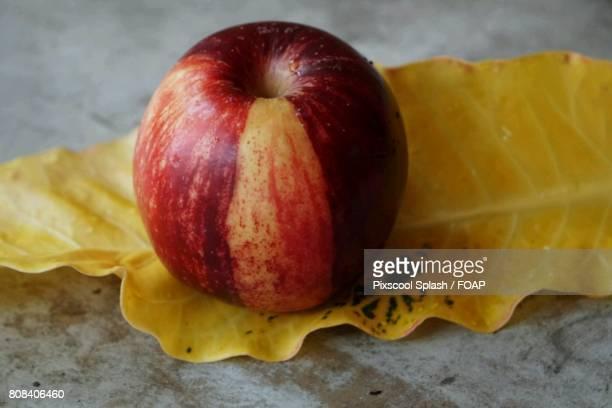 Red apple on dry leaf