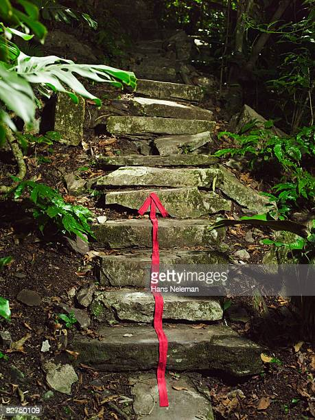 red arrow marking a path - las posas stock pictures, royalty-free photos & images