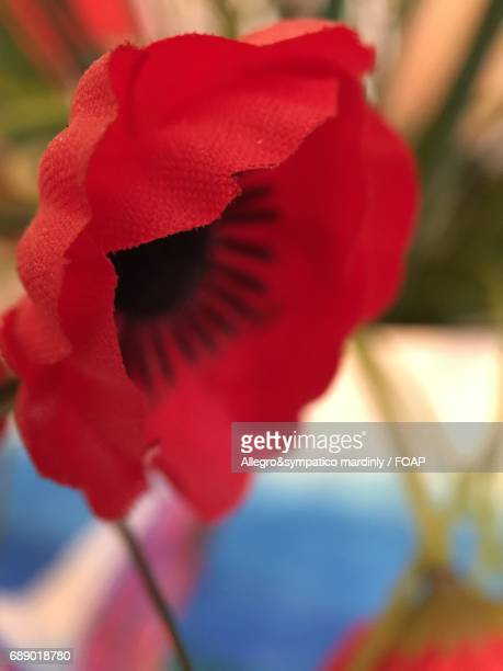 red artificial flower - flower part stock pictures, royalty-free photos & images