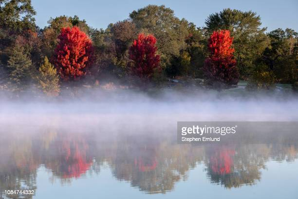 Red Autumn trees with Foggy Lake
