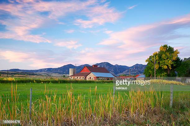 red barn at sunrise - farmhouse stock pictures, royalty-free photos & images