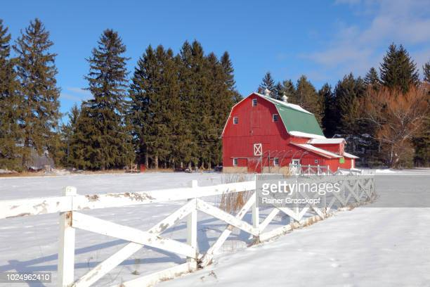 red barn bei carp lake in winter - rainer grosskopf fotografías e imágenes de stock