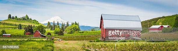 red barn green farm agricultural landscape white mountain peak panorama - hood river stock pictures, royalty-free photos & images