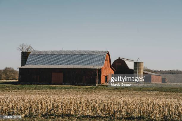 red barn  in the heartland - illinois photos et images de collection