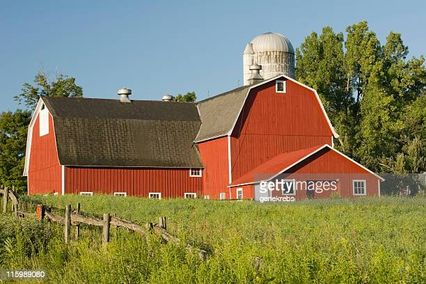 Red Barn on a Summer Morning
