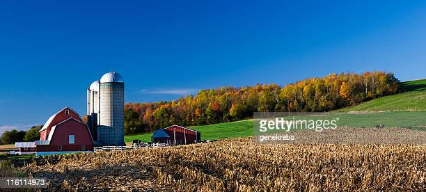 Red Barn on Autumn Afternoon