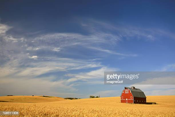 red barn on the prairie - great plains stock pictures, royalty-free photos & images