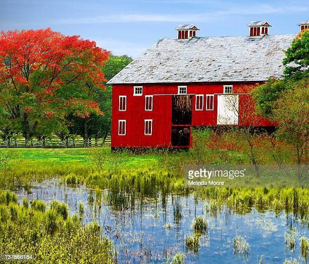 Red Barn with Pond