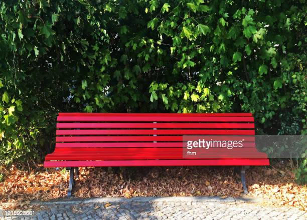 red bench in a public park - bench stock pictures, royalty-free photos & images