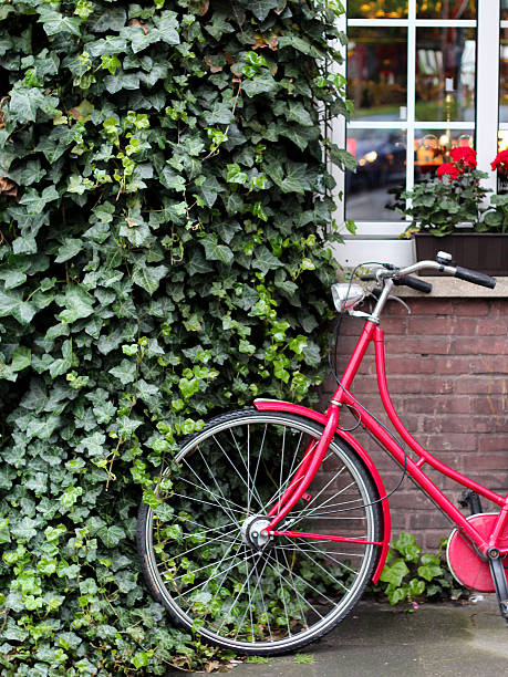 A red bicycle leaning against a wall