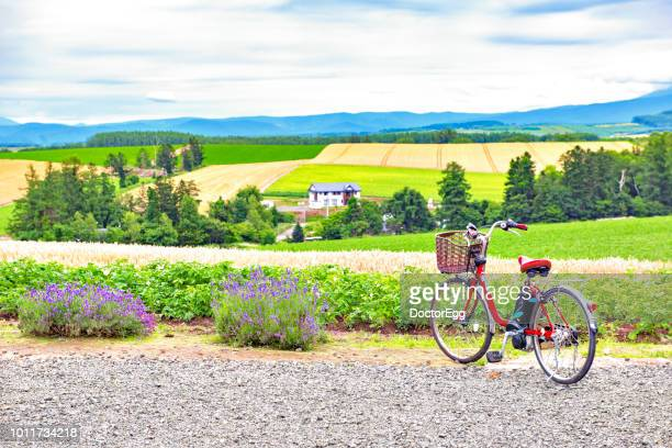 red bicycle with biei patchwork landscape in summer, japan - satoyama scenery stock pictures, royalty-free photos & images