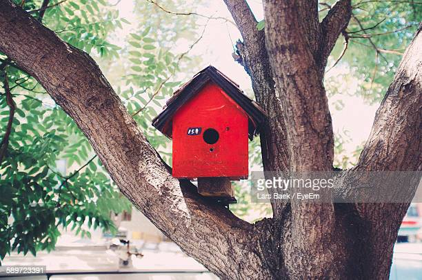 red birdhouse on tree in yard - birdhouse stock pictures, royalty-free photos & images