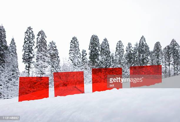 Red board of plastic on the snow