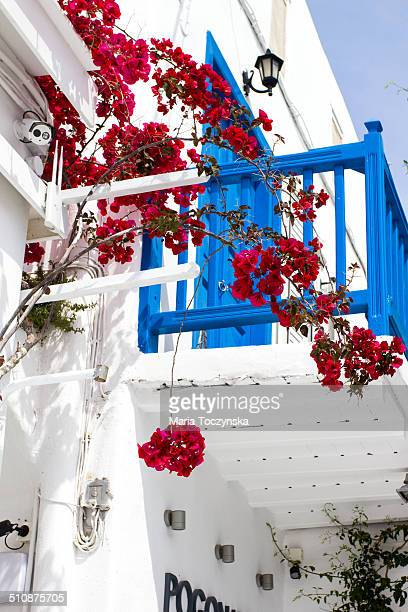 Red Bougainvillea outside a house in Greece