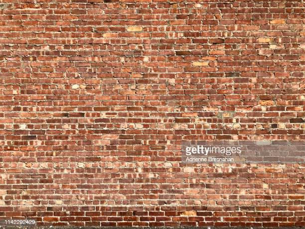 red brick wall - brick stock pictures, royalty-free photos & images