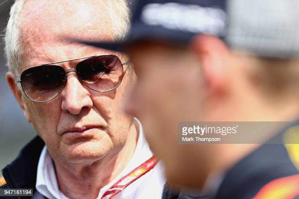 Red Bull Racing Team Consultant Dr Helmut Marko looks at Max Verstappen of Netherlands and Red Bull Racing before the Formula One Grand Prix of China...
