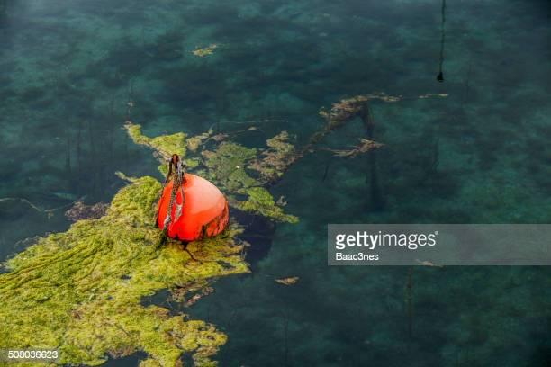 red buoy - フィンノイ ストックフォトと画像