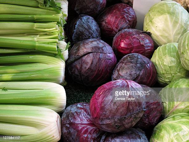 Red cabbage, green cabbage, celery