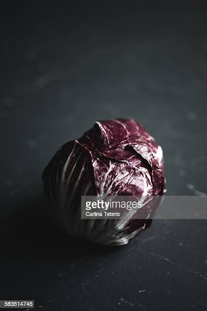 red cabbage - kool kool familie stockfoto's en -beelden