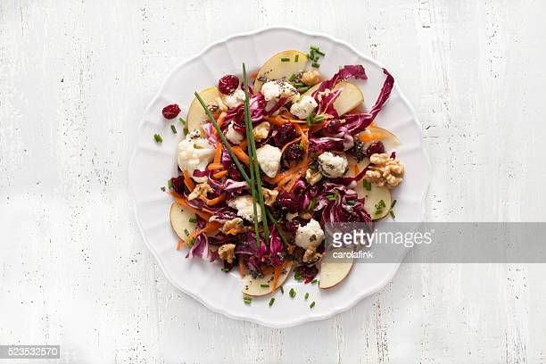red cabbage salat with cranberries and chia seeds - carolafink imagens e fotografias de stock