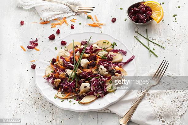 red cabbage salat with cranberries and chia seeds - carolafink stock photos and pictures