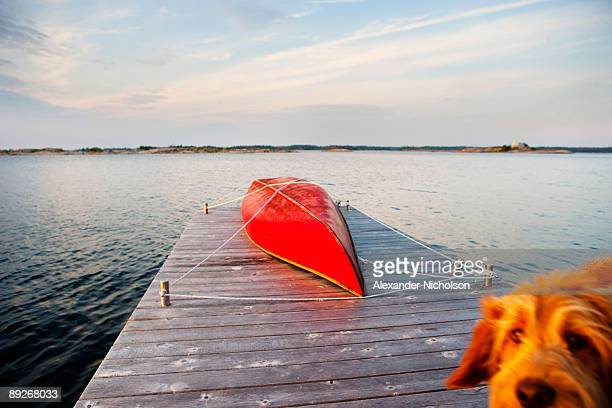 red canoe strapped to wharf - one animal stock pictures, royalty-free photos & images