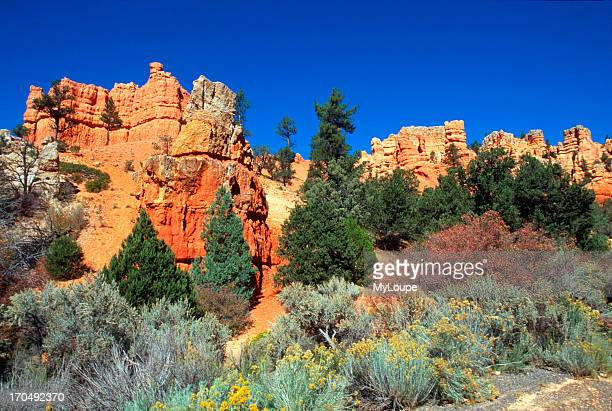 Red Canyon Hoodoos In Dixie National Forest Near Bryce Canyon National Park
