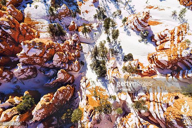 Red Canyon view from above