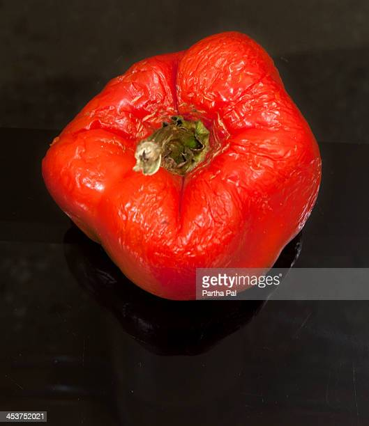 Red capsicum, Dried and old