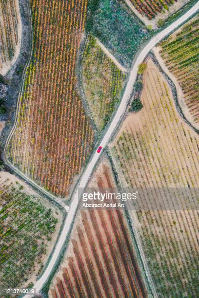 red car on a country road surrounded by spanish vineyards, spain - isolated color stock pictures, royalty-free photos & images