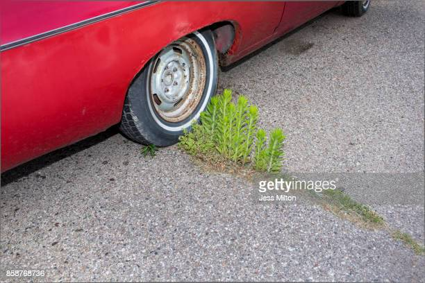 Red car with the wheel on weeds