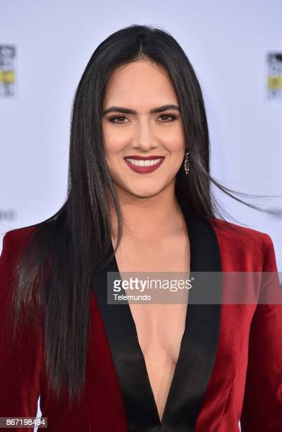AWARDS 'Red Carpet' Pictured Ana Lorena Sanchez at the Dolby Theatre in Hollywood CA on October 26 2017