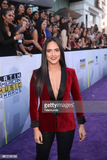 AWARDS 'Red Carpet' Pictured Ana Lorena Sanchez at the Dolby Theatre in Los Angeles CA on October 26 2017