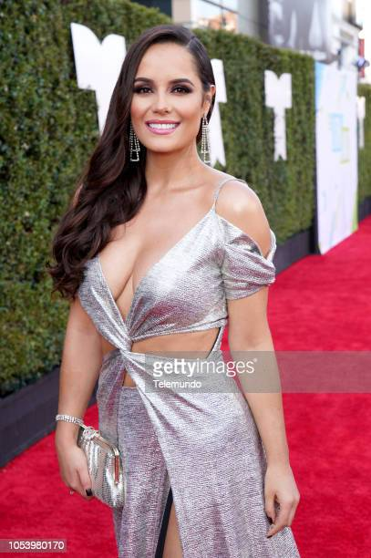AWARDS 'Red Carpet' Pictured Ana Lucía Domínguez at the Dolby Theatre in Hollywood CA on October 25 2018
