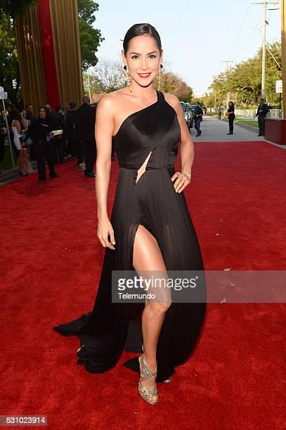 Carmen Villalobos arrive at the 2014 Billboard Latin Music Awards from Miami Florida at the BankUnited Center University of Miami April 24 2014...