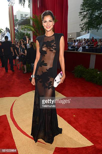 Red Carpet -- Pictured: Catalina Denis arrive at the 2014 Billboard Latin Music Awards, from Miami, Florida at the BankUnited Center, University of...