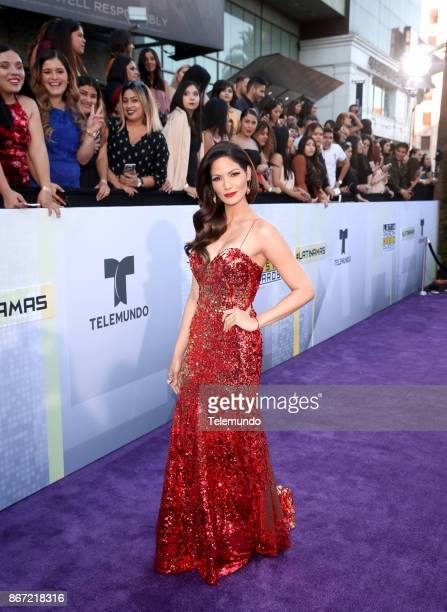 AWARDS 'Red Carpet' Pictured Cynthia Olavarría at the Dolby Theatre in Los Angeles CA on October 26 2017