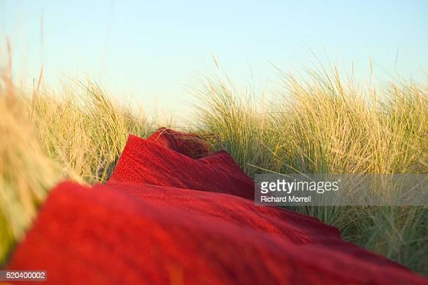 red carpet unrolled across field - tapis rouge photos et images de collection