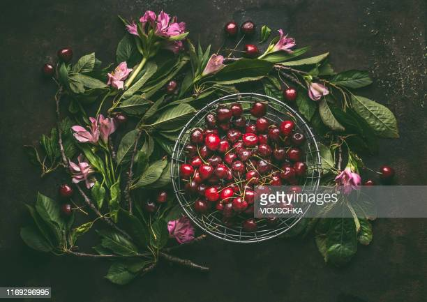 red cherries in bowl framed with branches and leaves of a cherry tree - ripe stock pictures, royalty-free photos & images