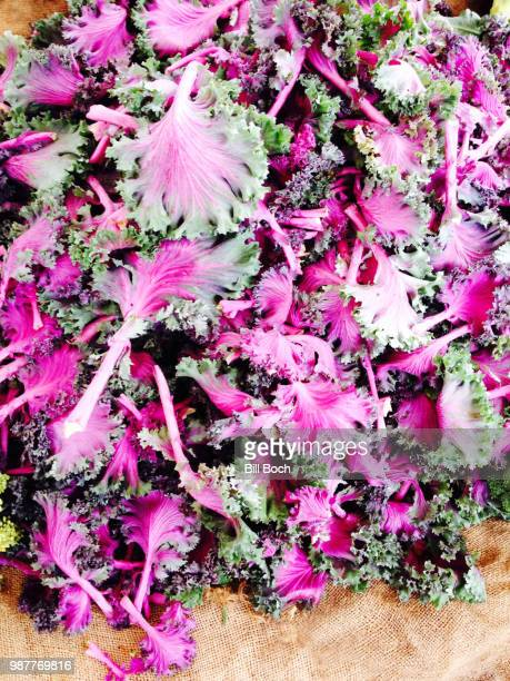 Red Chidori Kale In A Heap At A Farmers Market On Burlap Stock Photo