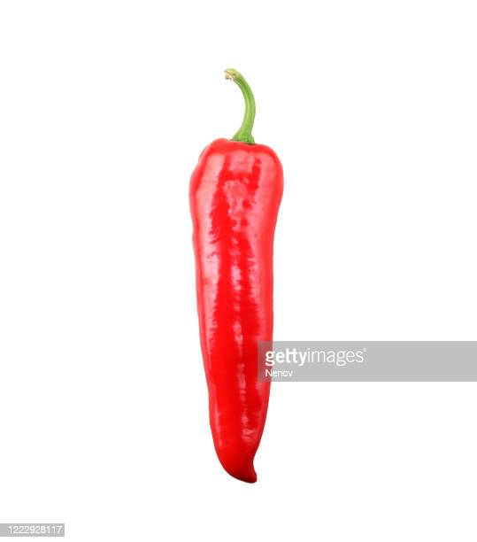 red chili pepper isolated on white background - red bell pepper stock pictures, royalty-free photos & images