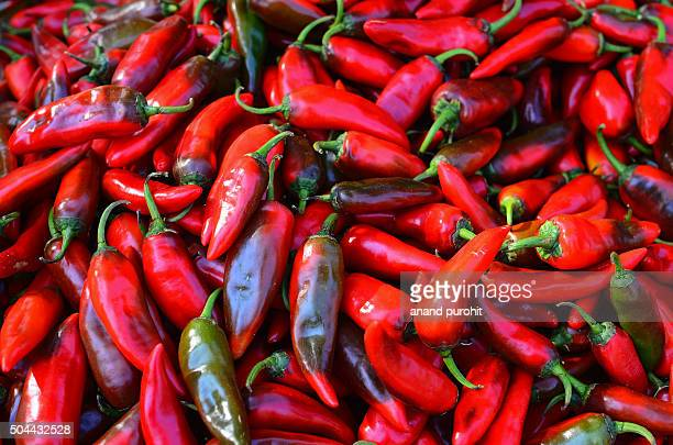 Red Chili Peppers, Gujarat, India