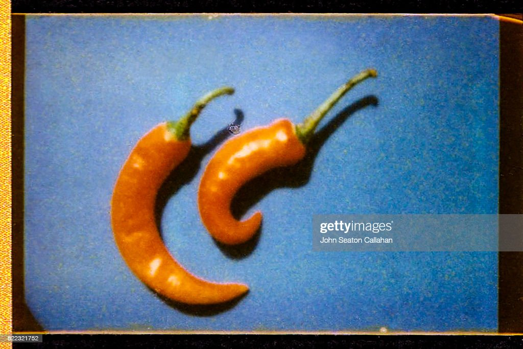 Red Chili Peppers : Stock Photo