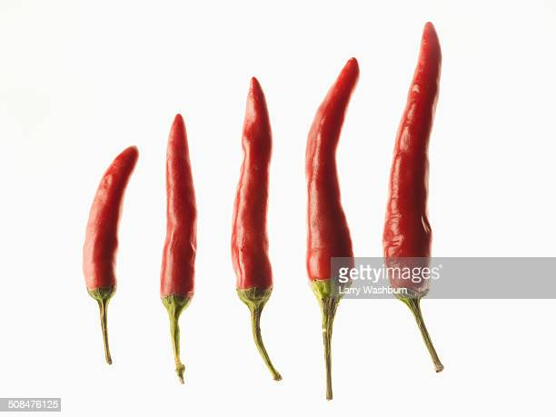 Red chilies in the order of size over white background