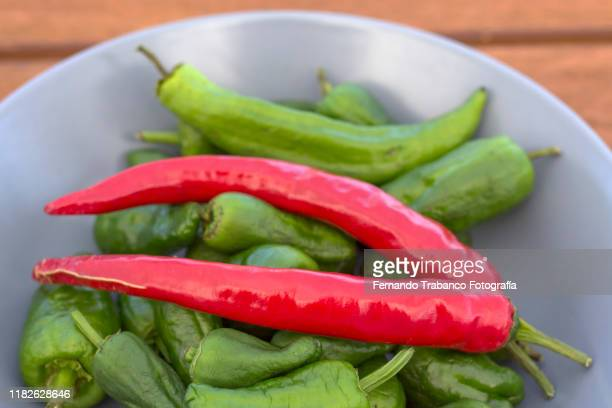 red chilli and green peppers - green chili pepper stock pictures, royalty-free photos & images