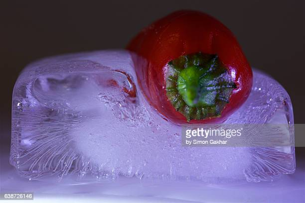 Red Chilli in Ice