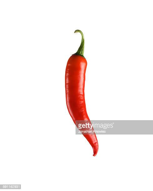 red chilli pepper - chili stock photos and pictures