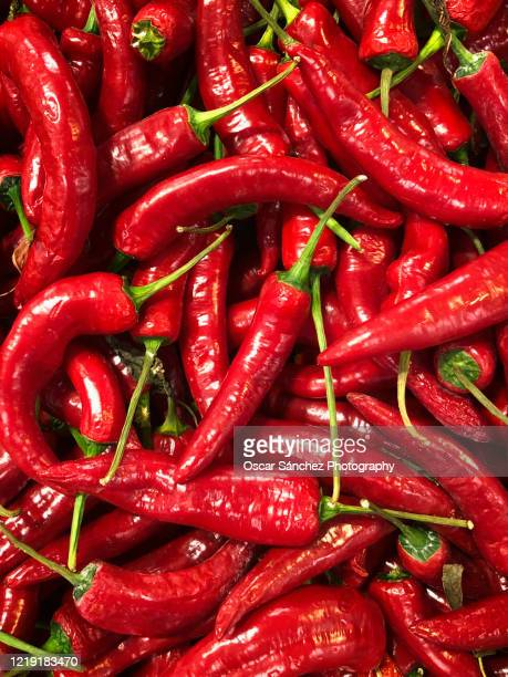 red chilli peppers - red chili pepper stock pictures, royalty-free photos & images