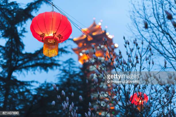 Red chinese lantern hanging in a tree with a pagoda and sky in t